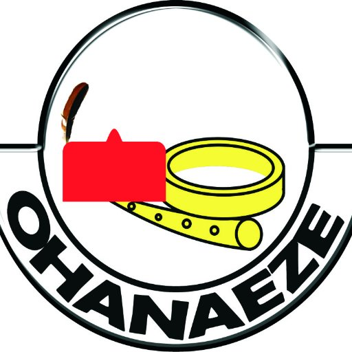 "OHANAEZE: ""No One Can Stop Igbo Presidency In 2023"