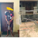 FatFather Arrested For Killing His Children With Wooden #Pestle In Anambra [PHOTO]her Arrested For Killing His Children With Wooden Pestle In Anambra [PHOTO]