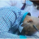 NDDC PROBE: Watch As NDDC Chairman,Kemebradikumo Pondei Collapsed During House of RepsHearing [PHOTOS/VIDEO]