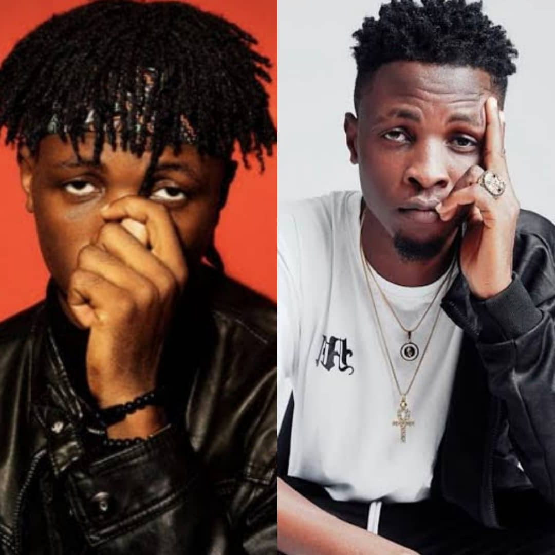 #BBNaijaLocdown2020: See Only BBNaija Housemate With The Support Of Over 30 Celebrities And Entertainers