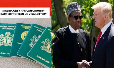 REVEALED!!! Why Nigeria Was The Only African Country Barred From 2022 US Visa Lottery